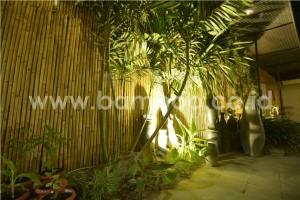 bamboo indonesia 08