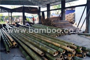 Ready to Export Products Bamboo Panel 04